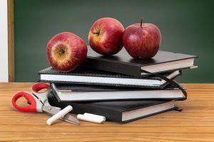 Micro cambio educativo